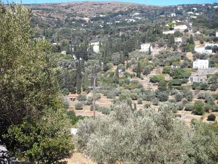 (For Sale) Land Large Land  || Cyclades/Andros Chora - 24.382 Sq.m, 800.000€